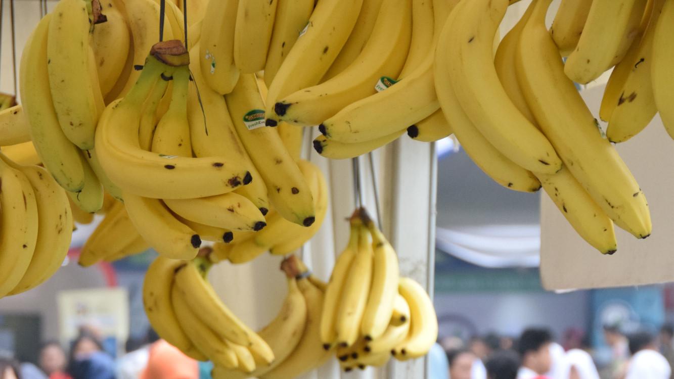 9 Makanan Alami Penurun Darah Tinggi Pisang Hingga Bawang Putih