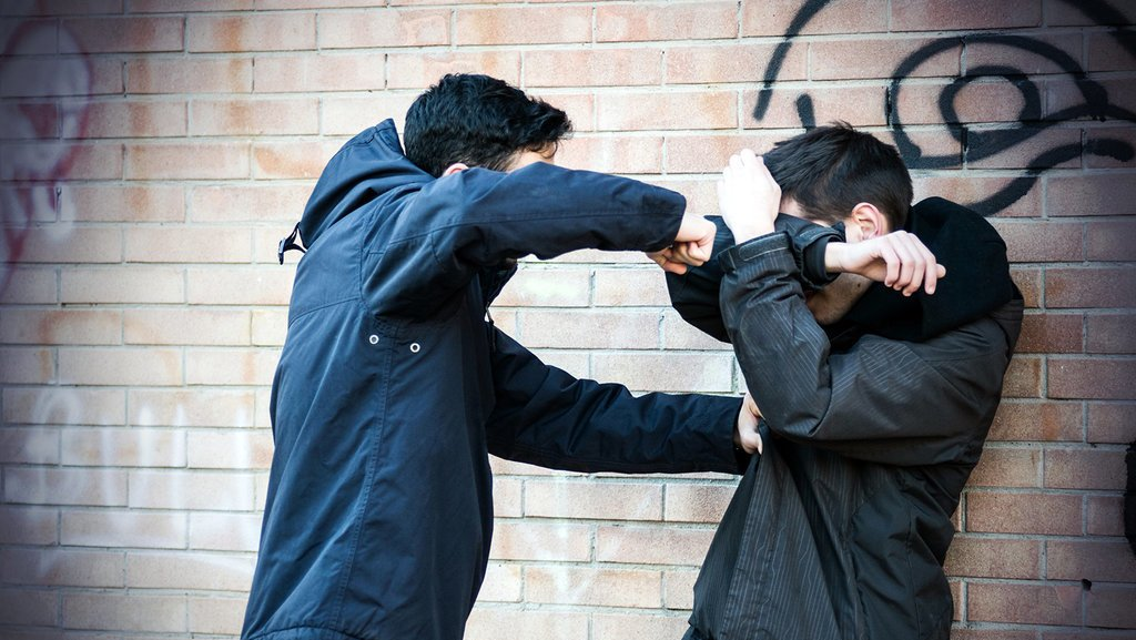 Djarot Minta Pelaku Bullying Thamrin City Dicabut KJP-nya
