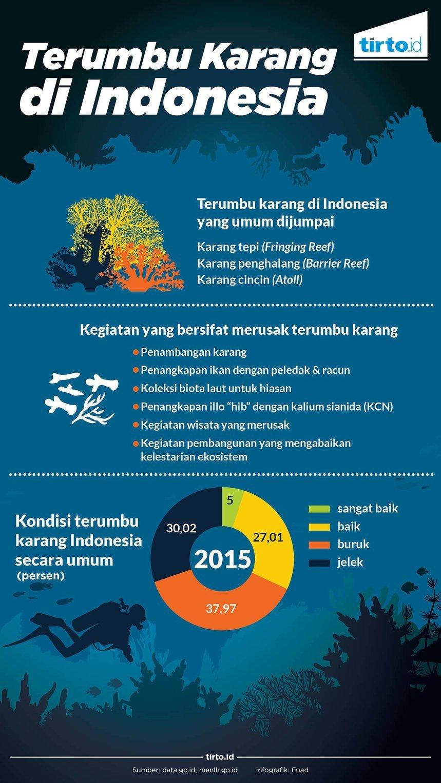 Terancamnya Keindahan Terumbu Karang Indonesia Tirto Id
