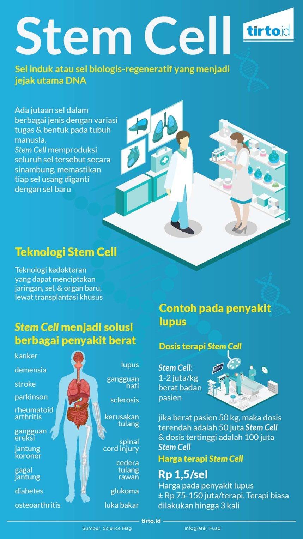 Terapi Stem Cell dan Berharganya Sel Manusia - Tirto.ID