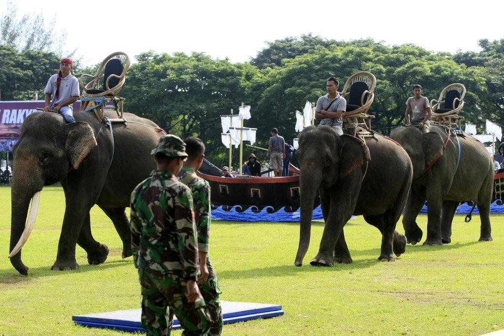 Eksploitasi Gajah untuk Kepentingan Pilkada 2018