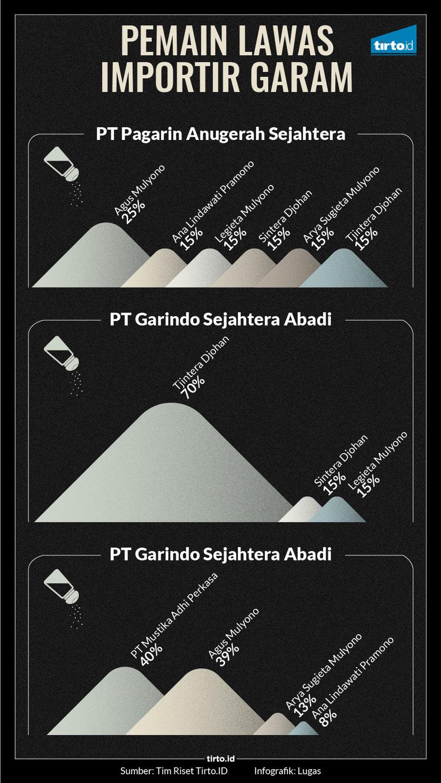 Infografik HL Indepth Garam