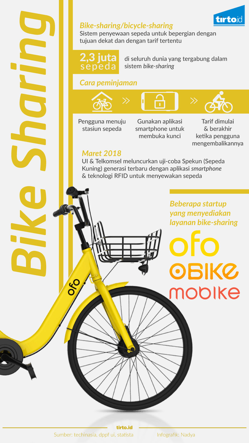 Infografik bike sharing