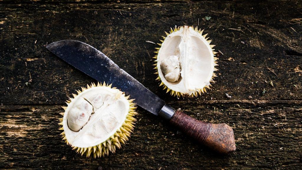 Manfaat Buah Durian: Lawan Kanker hingga Cegah Penuaan Dini - Tirto.ID