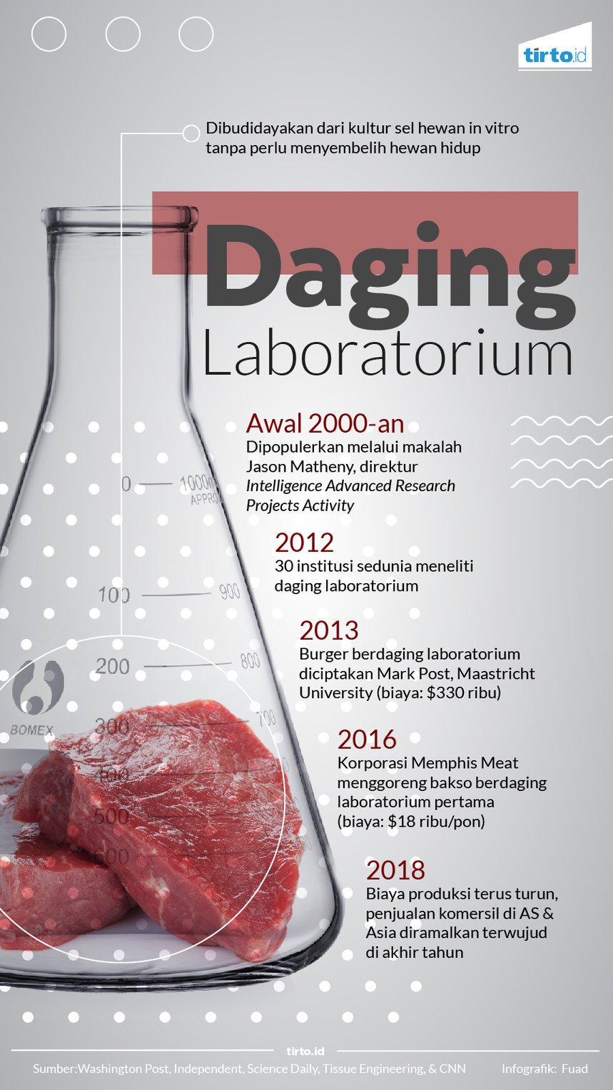 Infografik Daging Laboratorium