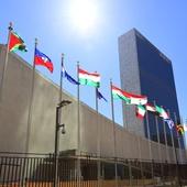 Mereka yang Menggenggam PBB