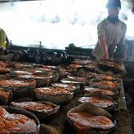 DJP Klaim Pungutan Pajak Gula Tak Pengaruhi Harga di Pasar