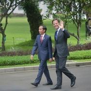 Jokowi Dorong Belanda Dukung Ekspor Sawit Indonesia di Eropa