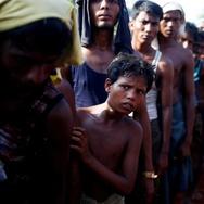 Fraksi PKS-PPP Usul Tampung Etnis Rohingya di Pulau Galang