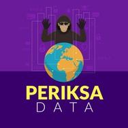 Akses Internet Meningkat, Keamanan Siber Lemah