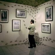 Pameran Seni Murni Jakarta Distract