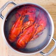 Pro-Kontra Merebus Lobster Hidup-Hidup: Krustasea Pun Merasa Sakit?