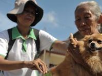 Dinkes: 101 Warga Mukomuko Digigit Anjing Rabies
