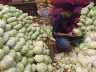 Usai Lebaran Harga Sayur di Kramat Jati Turun