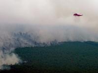 Terkait Asap, Masyarakat Riau Gugat Presiden