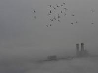 Polusi yang Mengancam Nyawa Balita