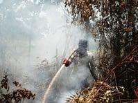 Kebakaran Gambut Makin Meluas, Kabut Mulai Selimuti Meulaboh