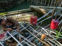 120 Juta Penduduk Indonesia Miliki Sanitasi Buruk