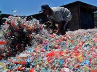 Berharap dari Ulat Pemakan Sampah Plastik