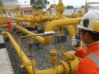 Pemerintah Turunkan Harga Gas untuk Tiga Sektor Industri