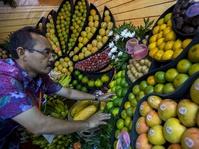 Apel dan Sayuran Ampuh Tekan Risiko Paru-Paru Kronis