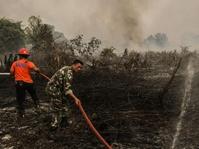 Lahan Gambut di Meranti, Riau Terbakar