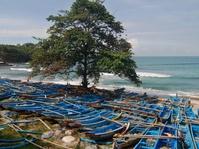 BMKG Yogya Peringatkan Bahaya Gelombang Laut Tinggi