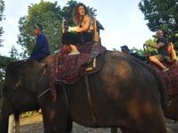 Pengunjung Pertama Borobudur di Awal Tahun 2018 Diarak Naik Gajah