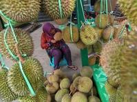 Saat Durian Mulai Jatuh, Sarung Malah Naik