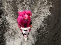 Kiat Aman Berkendara Selama Musim Hujan