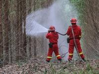 Simulasi Penaganan Kebakaran Hutan