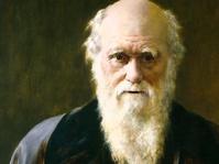 Cara Melawan Perbudakan ala Charles Darwin