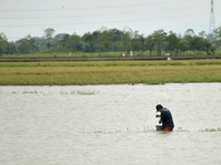Bank Indonesia: Banjir Berpotensi Pengaruhi Inflasi Februari