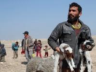 Pasukan Irak di Mosul Terlibat Bentrok Sengit dengan ISIS