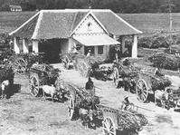 Swastanisasi Gula, Meliberalkan Jawa