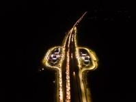Kemacetan di Rest Area Tol Cipali
