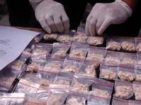Peredaran Narkoba di Kalangan Artis Versi BNN