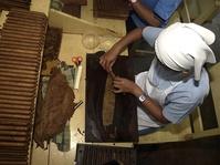 Kenekatan Kahar Muzakir Mengembangkan Tembakau Kuba