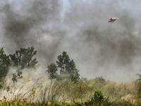 Lahan Terbakar 64 Hektar di Aceh Masih Berusaha Dipadamkan