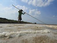 Luhut Nyatakan akan Tingkatkan Produktivitas Garam Nasional