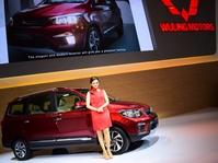 Gurita Perusahaan Cina di Bisnis Mobil Dunia