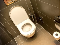Krisis Toilet yang Memicu Perceraian dan Masalah Kesehatan
