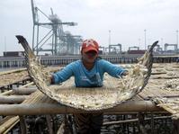 Industri Pengasinan Ikan Terkendala Pasokan Garam