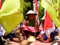 Petani Surokonto Wetan Minta KLHK Selesaikan Konflik