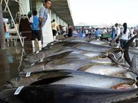 Derita Para Nelayan WNI di Gensan, Filipina Selatan