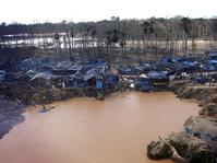Penambangan dan Pemerintahan Korup Ancam Rimba Amazon
