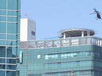 Tarif Helikopter Keliling Jakarta 15 Menit Dipatok Mulai Rp7 Juta