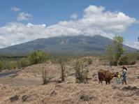 Pemkot Mataram Nyatakan Siap Tampung Pengungsi Gunung Agung