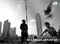 Kepakan Merpati di Langit Jakarta