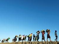 PBB Laporkan 590 Ribu Pengungsi Rohingya Terancam Penyakit